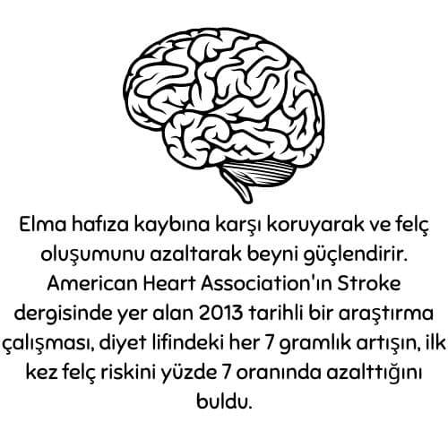 Elmanin beyine faydalari 1